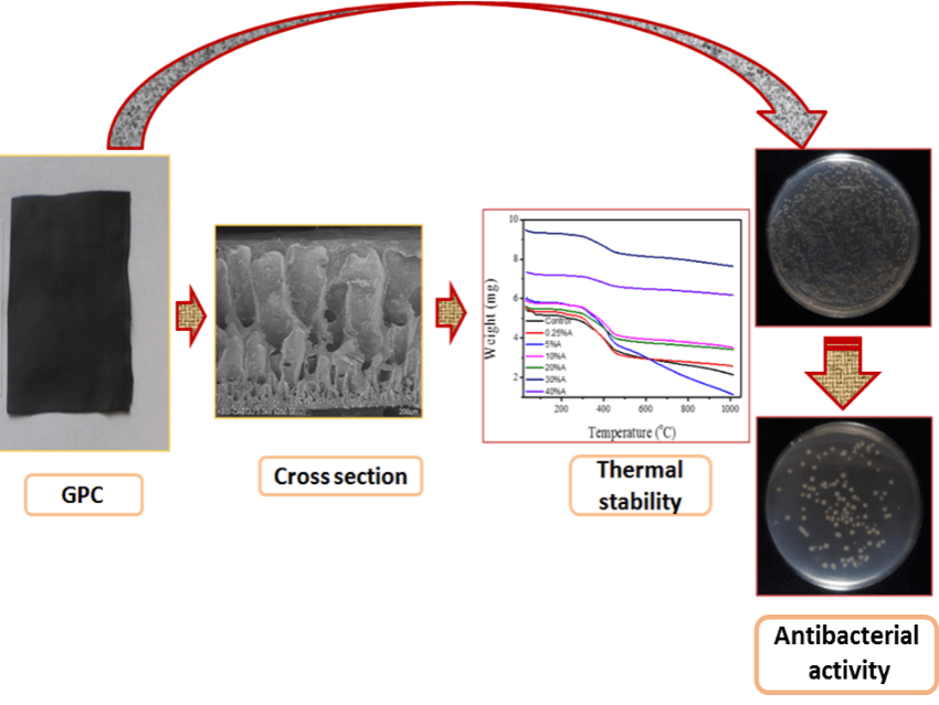 Fabrication of Thermally Stable Graphite-Based Poly(acrylonitrile-co-acrylic acid) Composite with Impressive Antimicrobial Properties