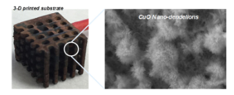 Hierarchical Assembly of CuO Nano-Dandelions on 3-D Printed Template