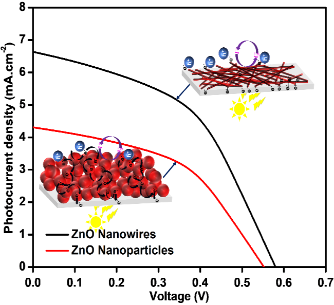A Facile Polyvinylpyrrolidone Assisted Solvothermal Synthesis of Zinc Oxide Nanowires and Nanoparticles and Their Influence on the Photovoltaic Performance of Dye Sensitized Solar Cell