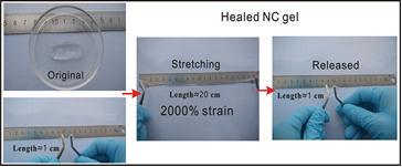 Highly Stretchable Self-Healing Nanocomposite Hydrogel Reinforced by 5 nm Particles