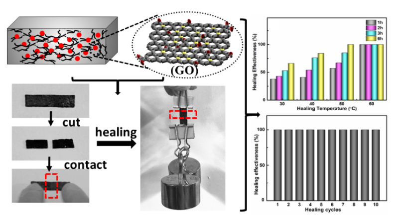 Self-Healing Polymer Composites Based on Hydrogen Bond Reinforced with Graphene Oxide