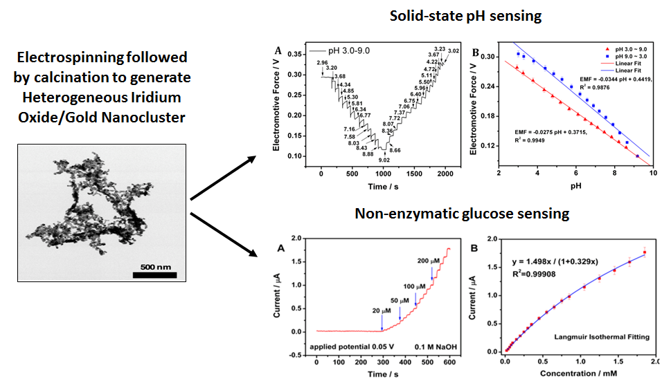 Heterogeneous Iridium Oxide/Gold Nanocluster for Non-enzymatic Glucose Sensing and pH Probing