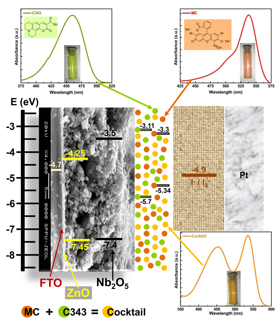 Efficiency Enhancement for Cocktail Dye Sensitized Nb2O5 Photoanode Towards Dye Sensitized Solar Cell