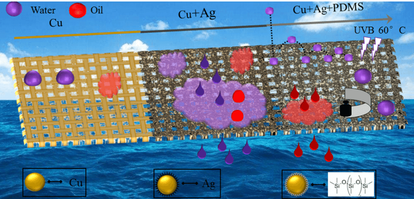 Facile Construction of Copper Mesh Surface from Superhydrophilic to Superhydrophobic for Various Oil-Water Separations
