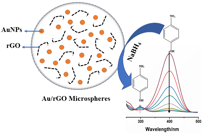 Catalytic Degradation of 4-Nitrophenol in Polluted Water by Three-Dimensional Gold Nanoparticles/Reduced Graphene Oxide Microspheres