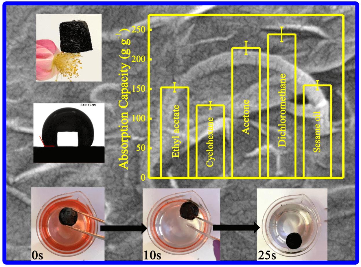 Amino Carbon Nanotube Modified Reduced Graphene Oxide Aerogel for Oil/Water Separation