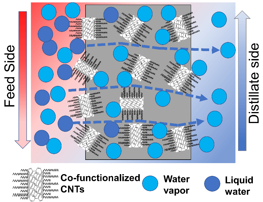 Superhydrophobic Electrospun PVDF Membranes with Silanization and Fluorosilanization Co-functionalized CNTs for Improved Direct Contact Membrane Distillation