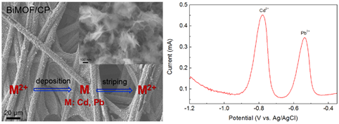 Flower-like Bismuth Metal-Organic Frameworks Grown on Carbon Paper as a Free-Standing Electrode for Efficient Electrochemical Sensing of Cd2+ and Pb2+ in Water