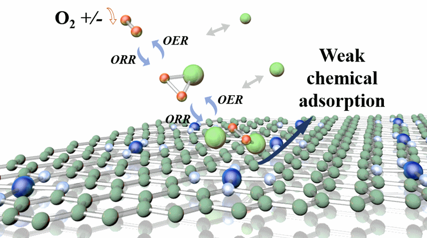 Experimental and Theoretical Characteristic of Single Atom Co-N-C Catalyst for Li-O2 Batteries