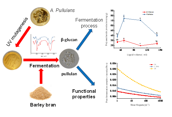 Extraction, Physicochemical and Film Properties of Polysaccharides from Highland Barley Bran Fermented by Aureobasidium Pullulans