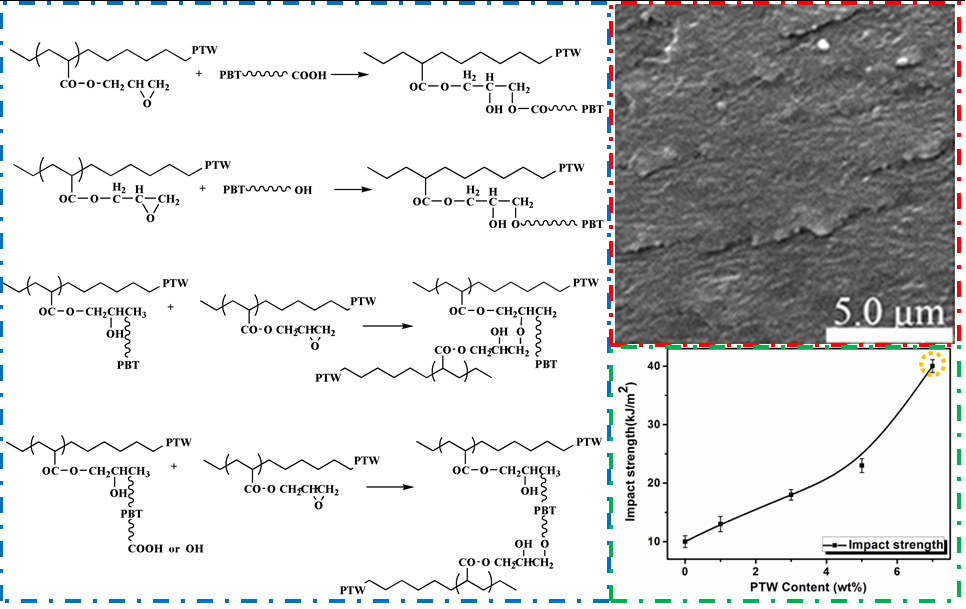 Effect of Ethylene–Butylacrylate–Glycidyl Methacrylate on Compatibility Properties of Poly (butylene terephthalate)/ Thermoplastic Polyurethane Blends