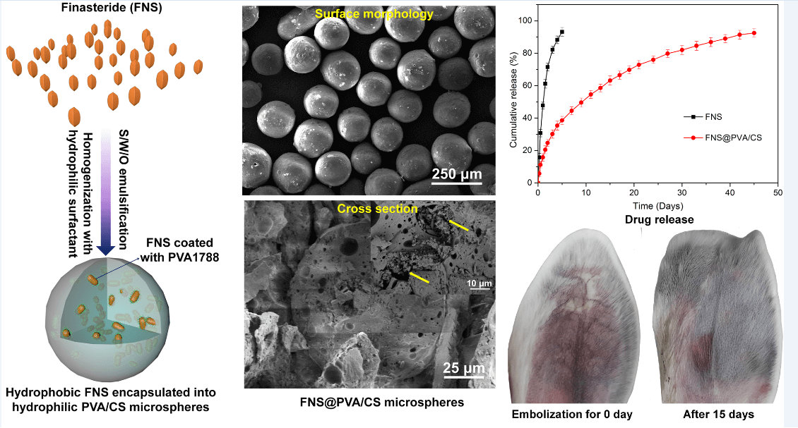 Microencapsulation of Poorly Water-soluble Finasteride in Polyvinyl Alcohol/chitosan Microspheres as a Long-term Sustained Release System for Potential Embolization Applications