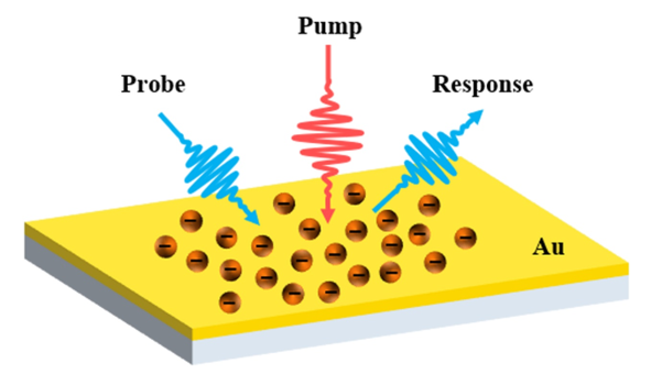 Sub-Picosecond Optical Response of Metals Due to Non-Thermalized Electron Dynamics