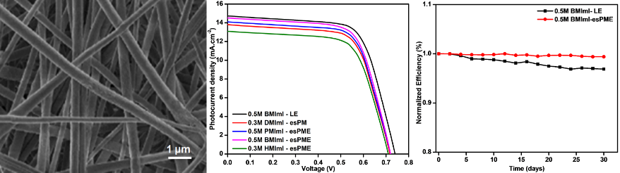 Influence of Various Ionic Liquids Embedded Electrospun Polymer Membrane Electrolytes on the Photovoltaic Performance of DSSC