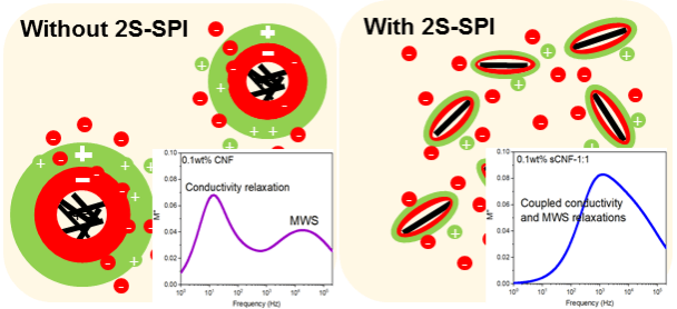 2S-Soy Protein-Based Biopolymer as a Non-Covalent Surfactant and Its Effects on Electrical Conduction and Dielectric Relaxation of Polymer Nanocomposites