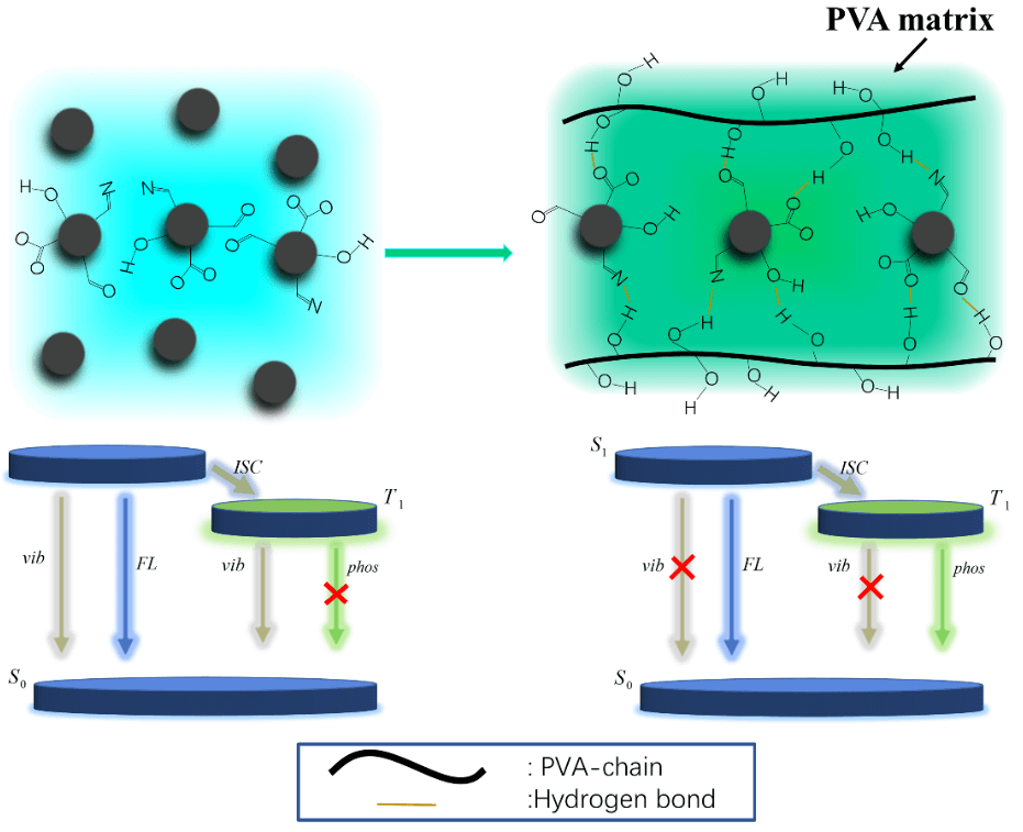 Long-Lived Room-Temperature Phosphorescent Nitrogen Doped CQDs/PVA Composites: Fabrication, Characterization and Application