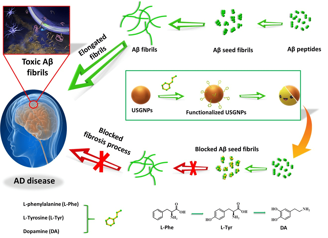 Attenuation of the Aggregation and Neurotoxicity of Amyloid Peptides with Neurotransmitter-Functionalized Ultra-Small-Sized Gold Nanoparticles