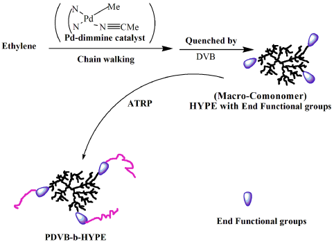 Synthetic of Polydivinylbenzene Block Hyperbranched Polyethylene Copolymers via Atom Transfer Radical Polymerization