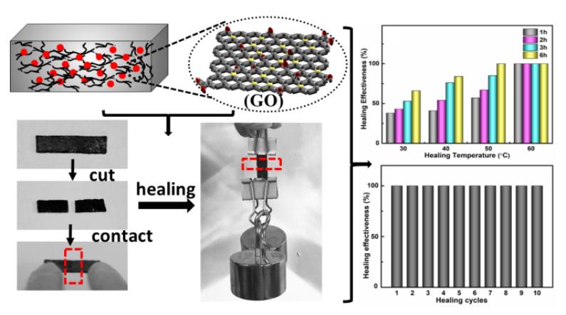 Self-Healing Polymer Composites Based on Hydrogen Bond Reinforced with Graphene Oxide