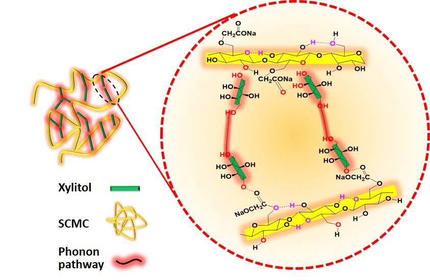 Regulating Intermolecular Chain Interaction of Biopolymer with Natural Polyol for Flexible, Optically Transparent and Thermally Conductive Hybrids