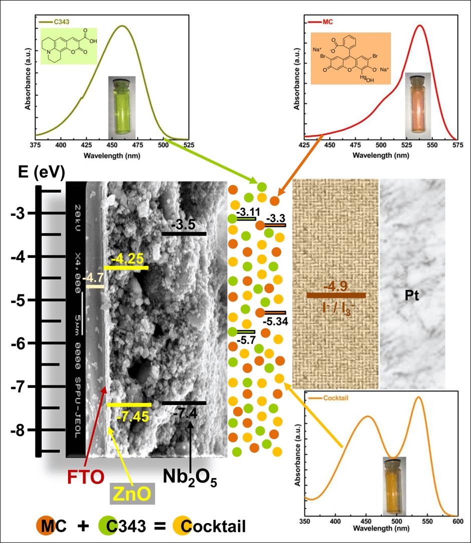 Efficiency Enhancement for Cocktail Dye Sensitized Nb2O5 Photoanode Towards Dye Sensitized Solar Cell