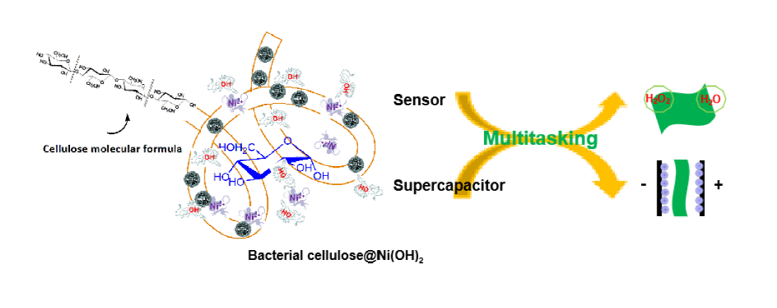 Robust Construction of Flexible Bacterial Cellulose@Ni(OH)2 paper: Toward High Capacitance and Sensitive H2O2 Detection