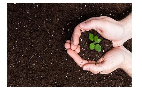 Opportunities in Crop Deciding Platform