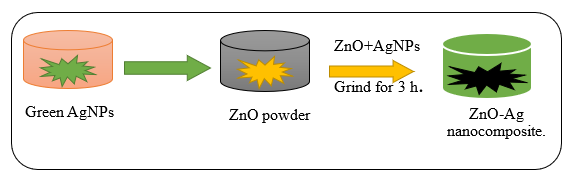 Green AgNPs Decorated ZnO Nanocomposites for Dye Degradation and Antimicrobial Applications