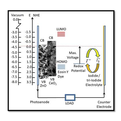 Eosin-Y Sensitized Bi-layered ZnO Nanoflower-CeO2 Photoanode for Dye-Sensitized Solar Cells Application
