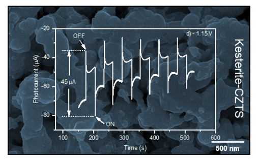 Single-step Electrochemical Deposition of CZTS Thin Films with Enhanced Photoactivity