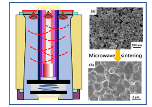 Densification Behavior and Microstructure Evolution of Mo Manocrystals by Microwave Sintering