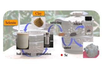 Preparation of Selenium-rich Tea Set and Its Release Properties of Selenium in Water