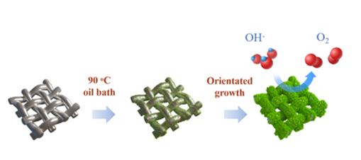 Steel Mesh Reinforced Ni(OH)2 Nanosheets with Enhanced Oxygen Evolution Reaction Performance
