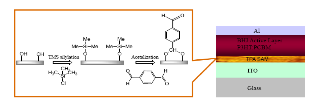 All-Organic Solution Processed Solar Cells Based on Terephthaladehyde Self-assembled Monolayer