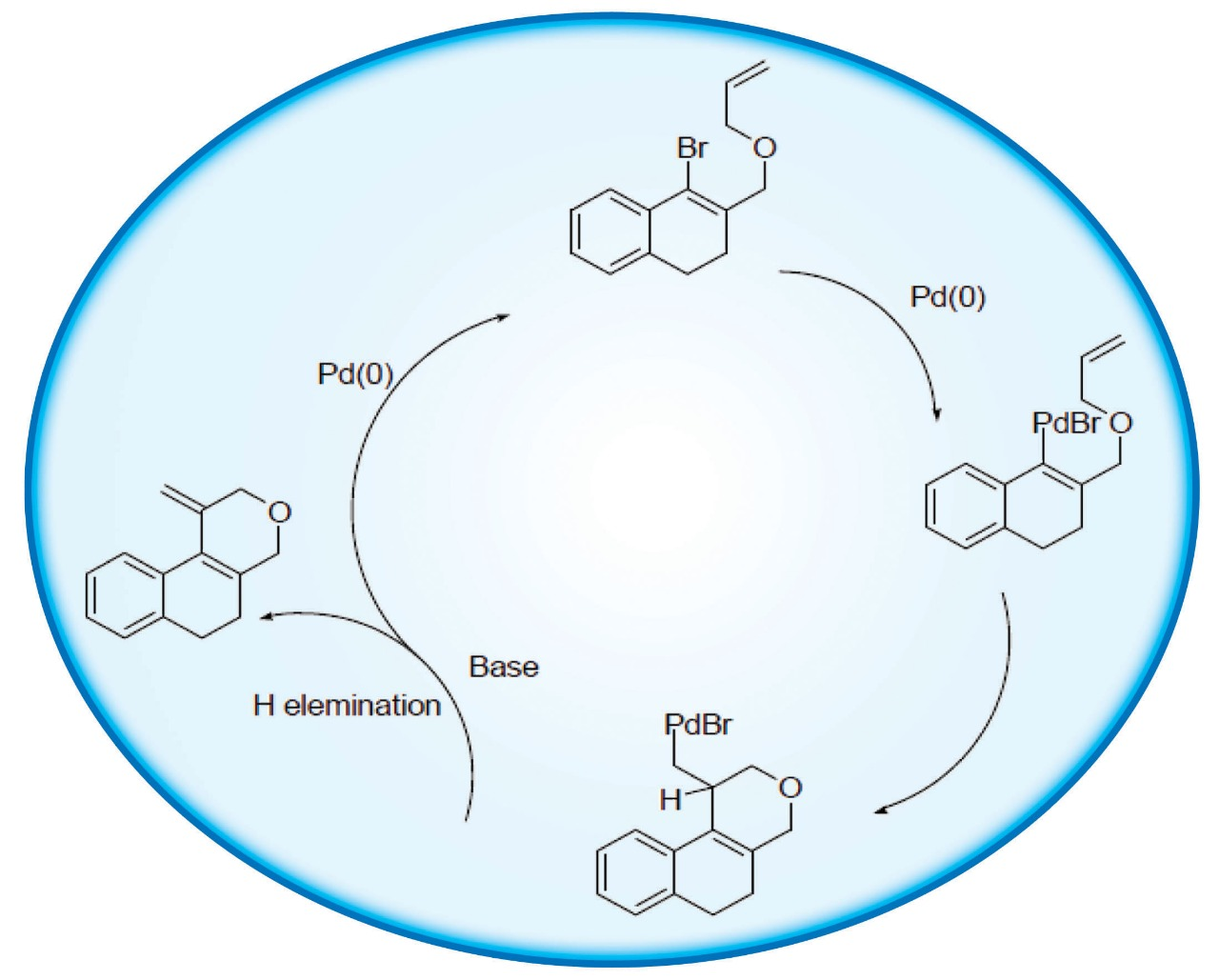 Synthesis of Fused Pyran and Tetracyclic Pyran Rings by Intramolecular Palladium-catalyzed β-H Elimination and C–H Bond Functionalization