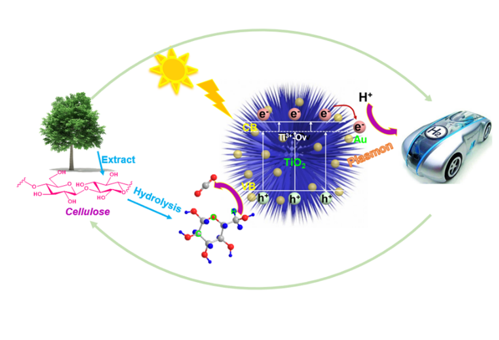 Gold/titania Nanorod Assembled Urchin-like Photocatalysts with an Enhanced Hydrogen Generation by Photocatalytic Biomass Reforming