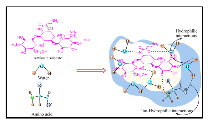 Physico-chemical Characteristics of Amino Acids in Aqueous Solution of Amikacin Sulphate
