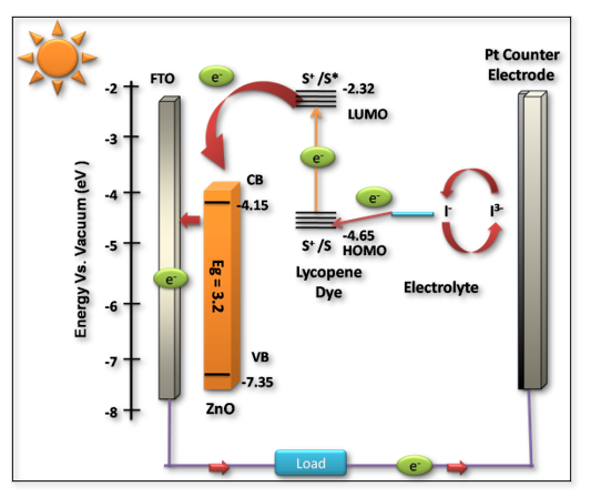 Utilization of Naturally Occurring Pigment Lycopene as a Photo-sensitizer for ZnO based Dye-Sensitized Solar Cells
