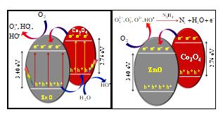 Spindle-like Co3O4-ZnO Nanocomposites Scaffold for Hydrazine Sensing and Photocatalytic Degradation of Rhodamine B Dye